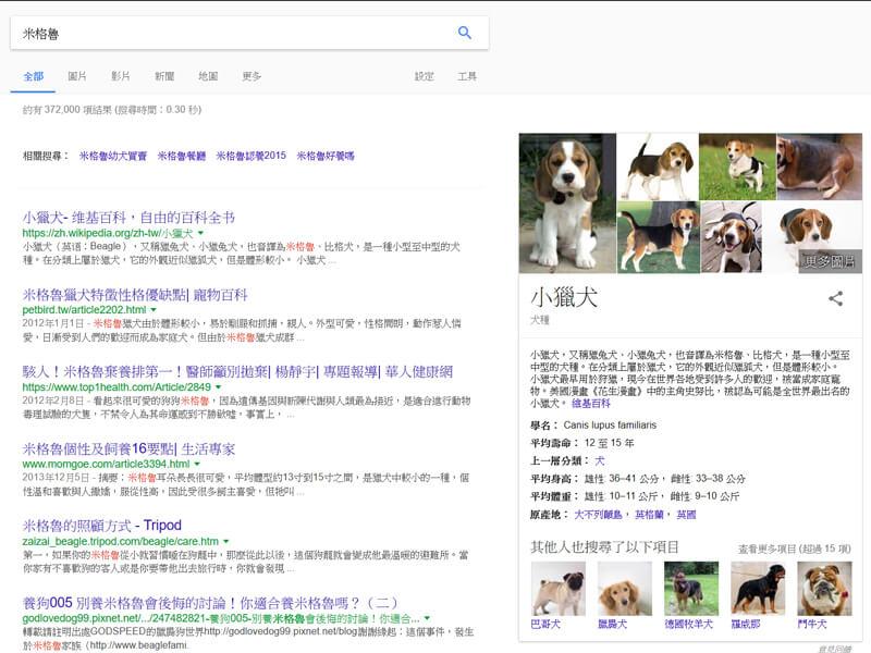 Google搜尋米格魯